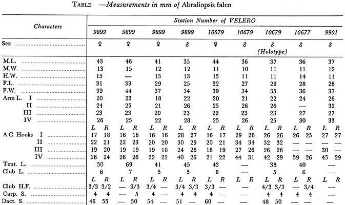 Table of measurements and counts